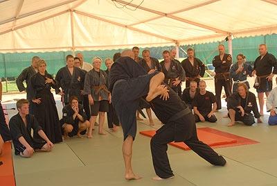 Ryoi Shintô Training